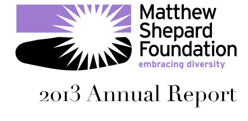 2013 MSF Annual Report